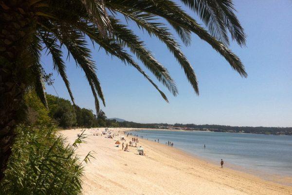 la playa en la disfrutamos del verano