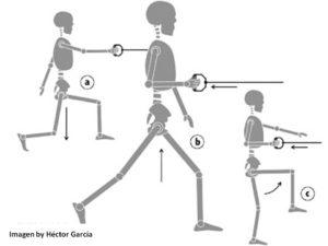 importanza allenamento del core
